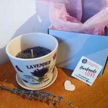 Ароматна натурална свещ Лавандула в порцеланова кашпа за цветя
